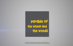 10 - The Parable of The Wheat and The Weeds
