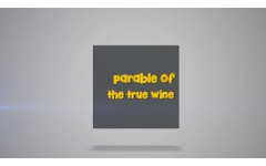 36 - The Parable of The True Vine