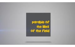 30 -  The Parable of The Lilies of The Field