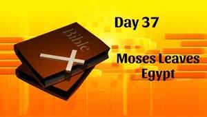 Moses Leaves Egypt