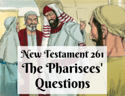 NT 261 - The Pharisees' Questions
