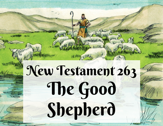 NT 263 - The Good Shepherd