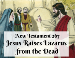 NT 267 - Jesus Raises Lazarus from the Dead