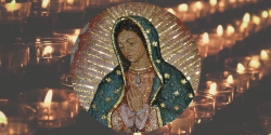 Our Lady of Guadalupe - Prayer of Pope Benedict XVI