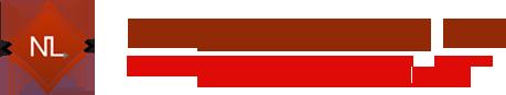 Next Level Tax Logo